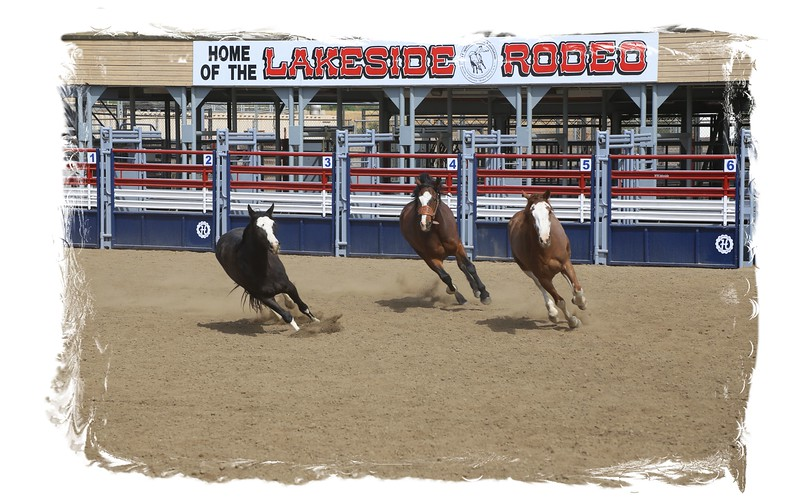 Lakeside Rodeo_3 Broncs_Racing in Front of Sign_Susie_2015.jpg