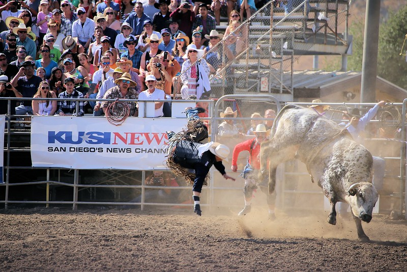 Sunday_2015 Lakeside Rodeo_Bull and Airman_KC.jpg
