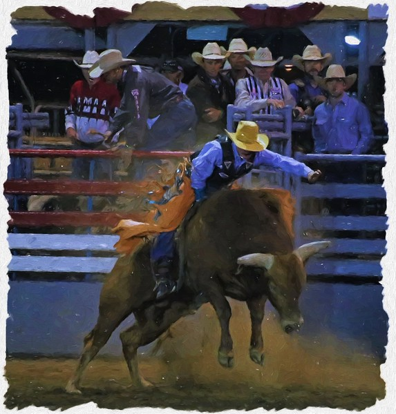 Bull Rider Single 2015 Lakeside Rodeo KC Oil by LaScala.jpg