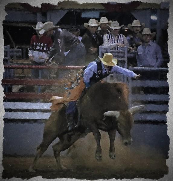 Bull Rider Single 2015 Lakeside Rodeo KC Fading Way Topaz.jpg