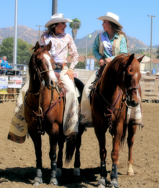 Pushing Cattle in Arena 2017 1 LSRQ.jpg