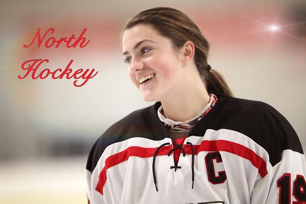 Girls Hockey 2014
