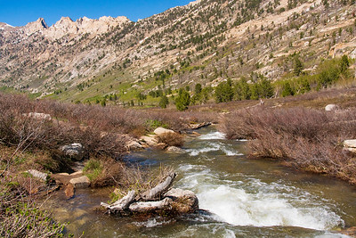 Cascades of Lamoille Creek and The Ruby Mountains
