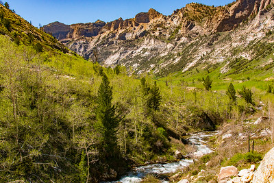 Grainite Peaks of the Ruby Mountains and Lamoille Creek