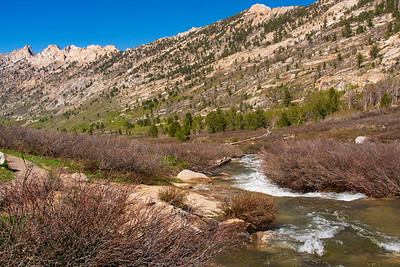 Lamoille Creek and the Ruby Mountains