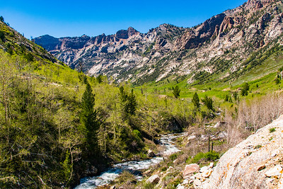 Spring in Lamoille Canyon
