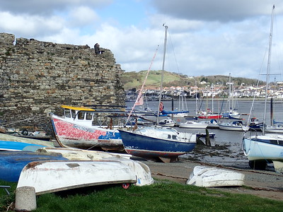 The Maina at Conwy