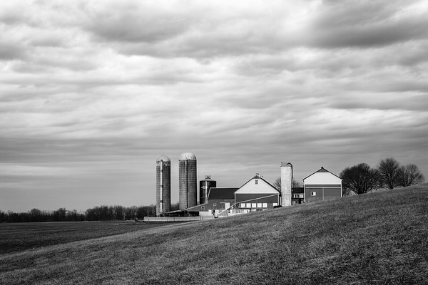 Farm in B&W