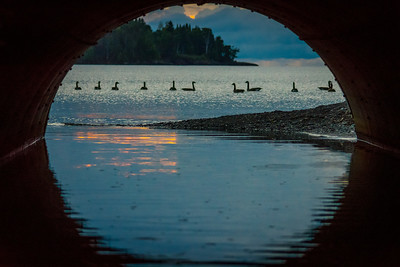Framed In Burlington Bay