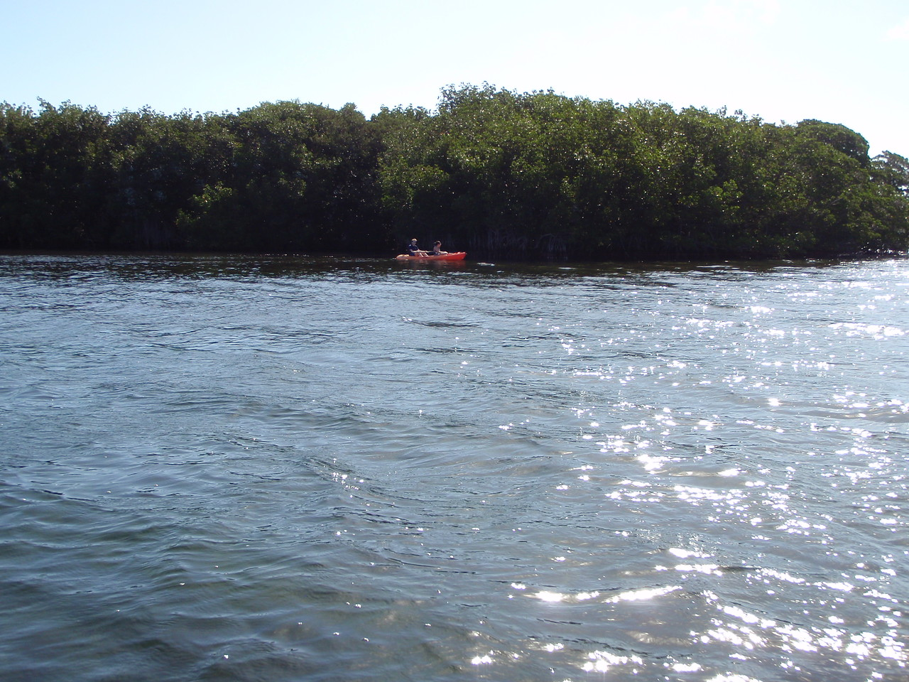 Next up was Pelican Key - a small mangrove covered island