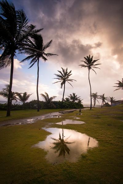 Rain Storm Reflection