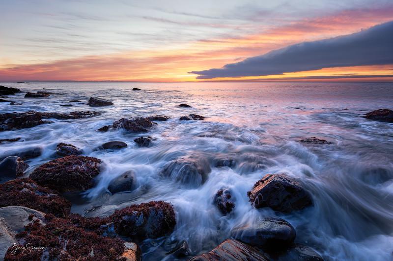 December Dawn, Rye Coast