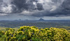 Storm Over The Glass House Mountains, Queensland