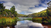 Lake Llewellyn Tasmania