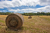 Haymaking Beaudesert
