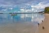 Noosa River  Sunshine Coast, Queensland, Australia