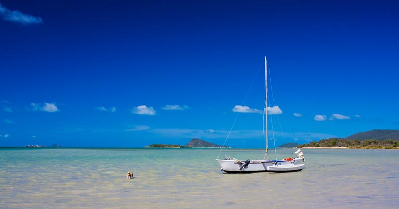Dingo beach Queensland