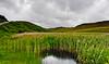 Frog Country, Isle of Skye, Scotland