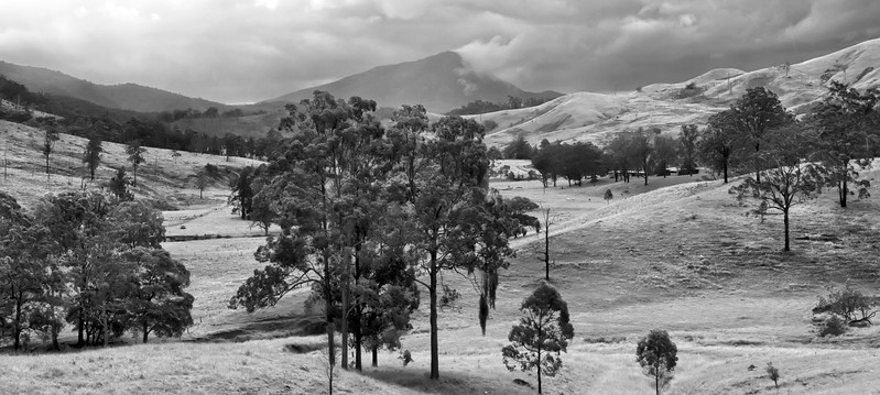 Towards Mount Warning, New South Wales