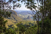 Lamington National Park (12)
