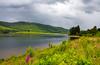 Loch Scene Scotland