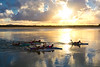 Paddling At Sundown, Noosa, Queensland