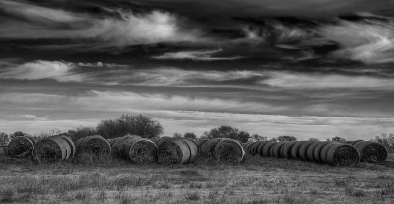 Hay, near Justin, Texas (November 2013)
