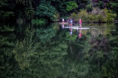Paddle boards at Austin Town Lake