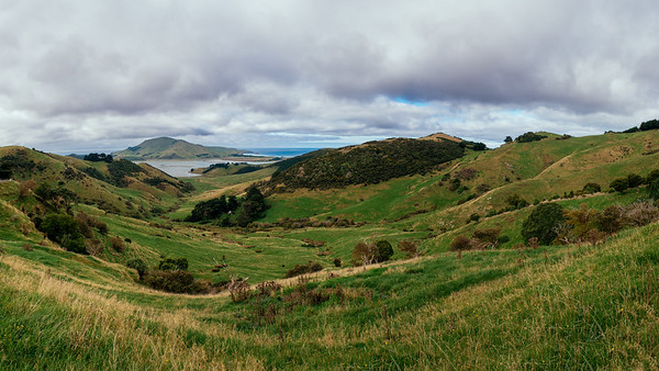 Otago Peninsula High Road