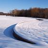 Snowy Serpentine
