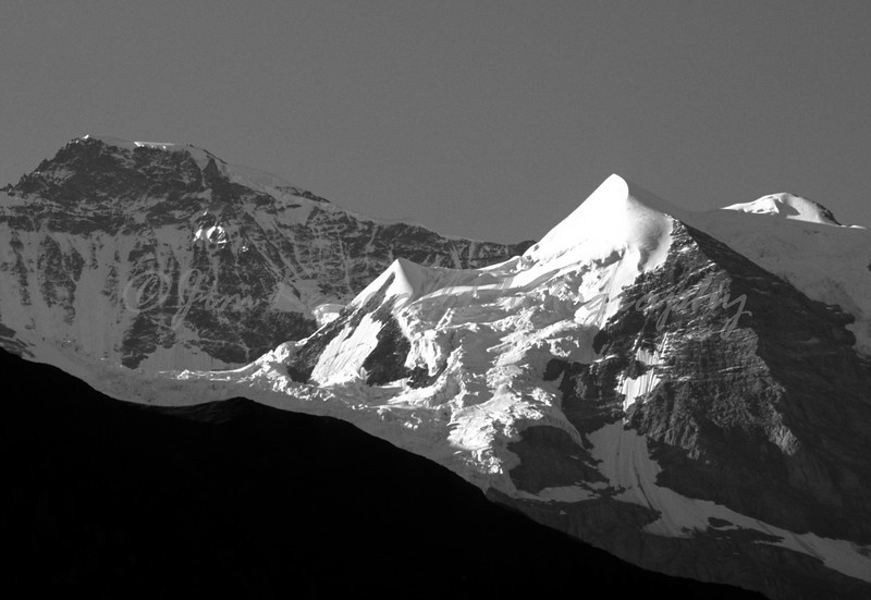 Jungfrau in Black and White