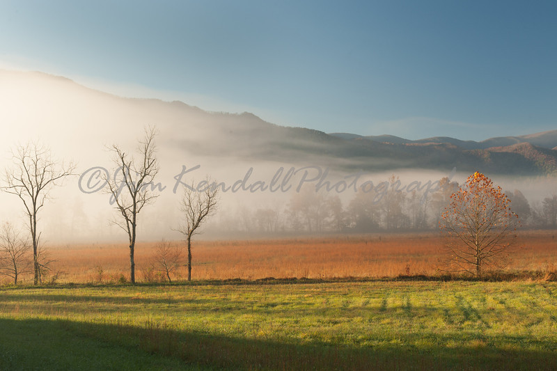 Cades Cove Color and Fog