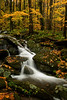 Small Falls off New Found Gap Road in the GSMNP