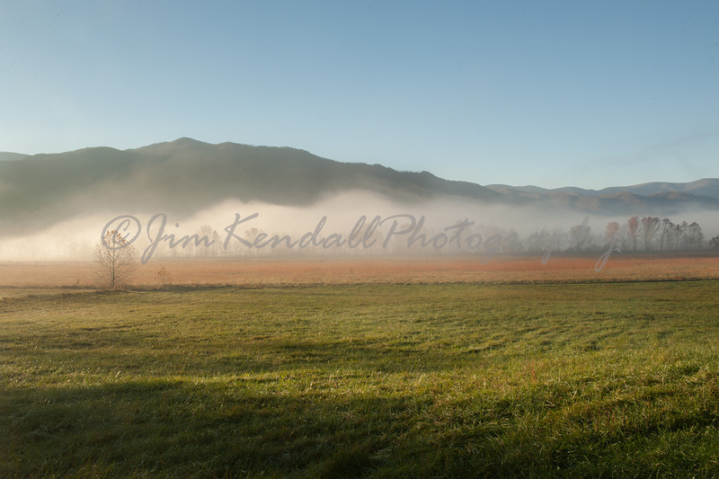 Meadow, Fog and Mountains