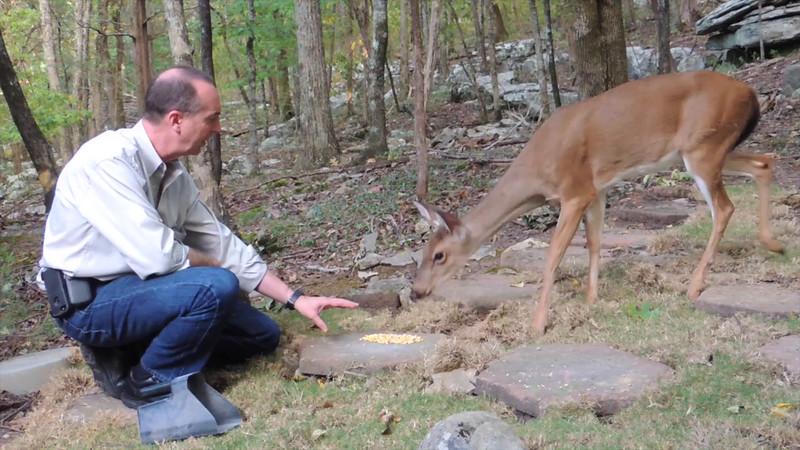 Petting Deer-1