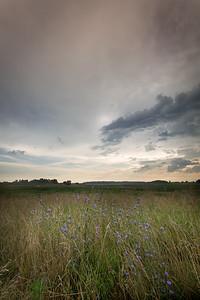 Pine Creek Nature Preserve - Benton County, Indiana