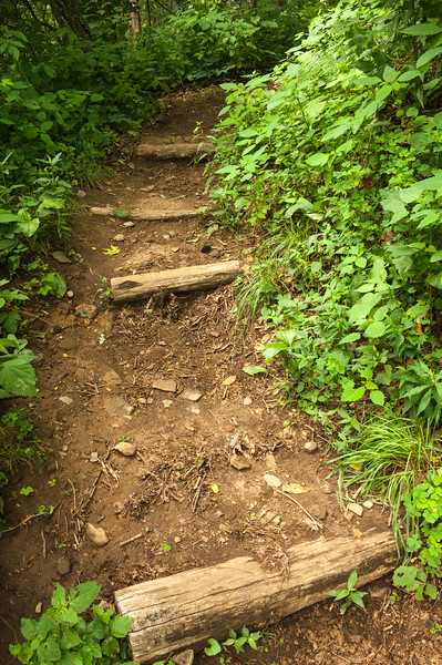The Pathway.