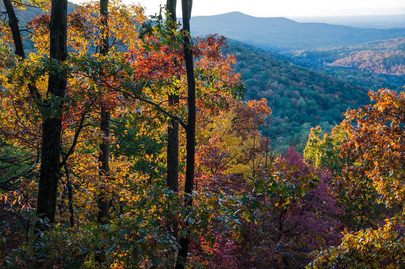 Blue Ridge Color.