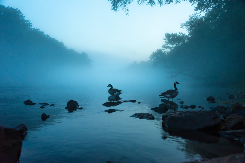 River Mist.