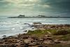 Lighthouse Keeper's Abandoned house - Ano Nuevo Island