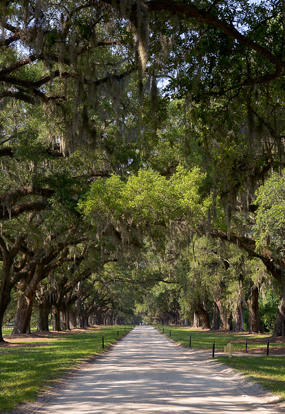 Plantation Drive, South Carolina