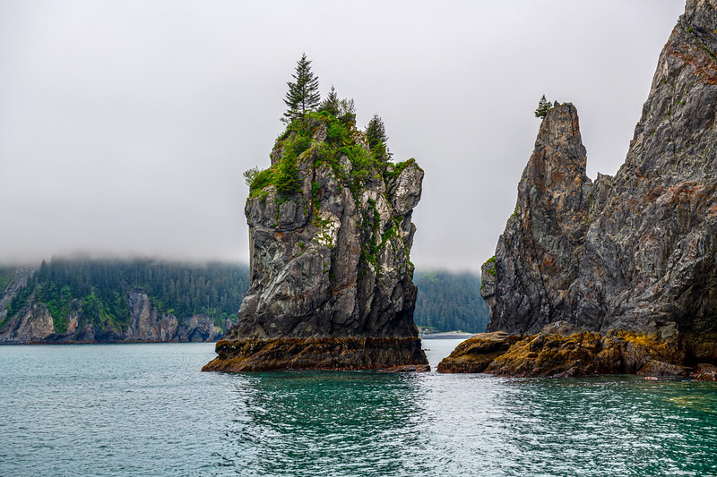 Aialik Bay Formations