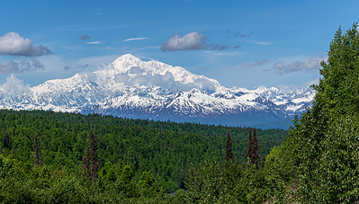 The Great Denali