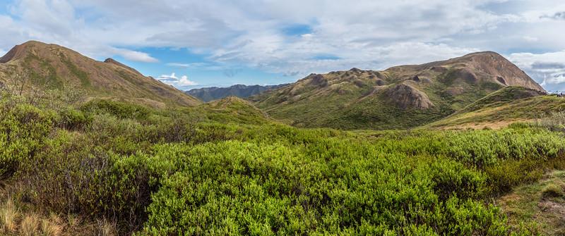 Hills of Denali