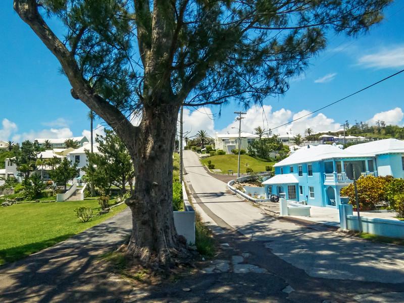 Bermuda Hills and Homes