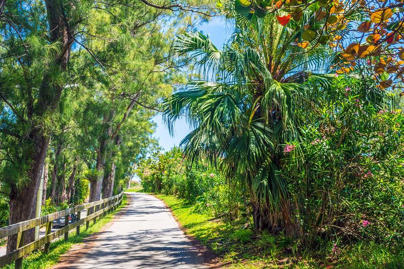Bermuda Walkway