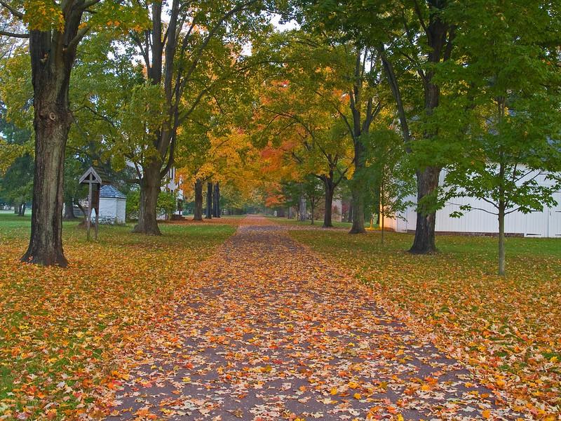 AutumnWalk08