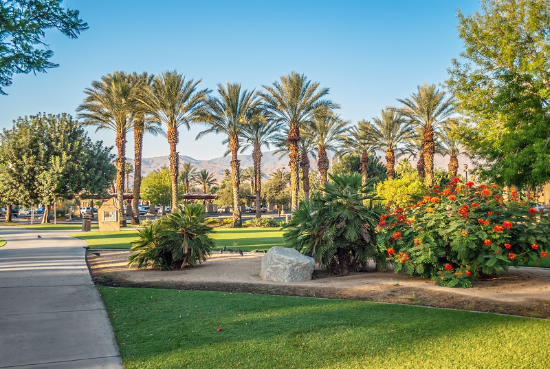Gardens and Palms