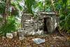 Mayan Ruins 1