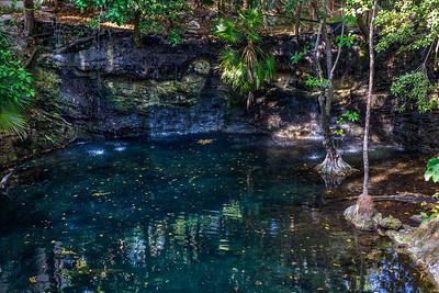 Cenote Wall